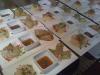 Catering / Cooking: fresh springrolls, noodlesalade en zoetzure dip