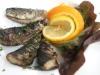 Catering / BBQ: gegrilde sardines van de BBQ